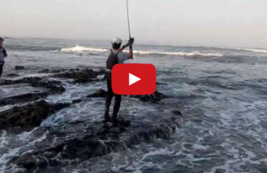 video pesca robalo spinning mar