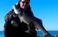 vídeos de pesca robalos em portugal