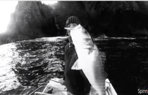 foto de pesca robalo