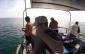 videos pesca embarcada portugal