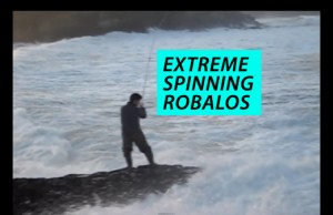 extreme-spinning-robalos-peixe