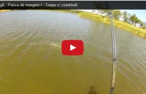 pesca desportiva carpa rio crankbait passeadores