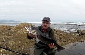 robalo-ao-spinning-rochas-corrico-2015-videos-pesca-desportiva