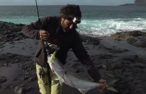 pesca ao corrico espanha amostras