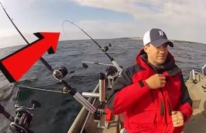 salmao king pesca embarcada videos