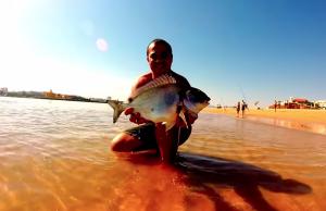 pesca dourada ferragudo