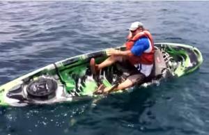 falhanço pesca
