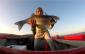 robalo spinning pesca desportiva