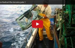 Pesca Radical Ilha Terceira dsportiva