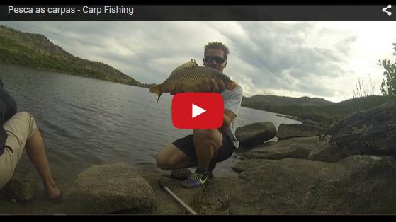 carp fishing carpa – A Pesca