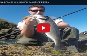 pesca desportiva black minnow
