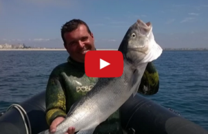 pesca submarina robalo 7kg