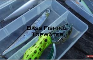 Pesca ao Achigã - Bass Fishing - Topwater