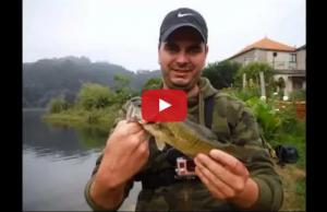 Pesca ao Spinning no rio Douro Pesca e Liberta