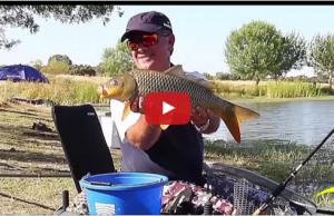 Pesca com feeder na Ribeira de Vide