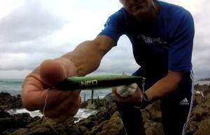 pescar-robalos-amostras-rochas-rockfishing