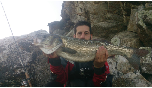 Robalo spinning galiza