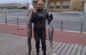 congro-17-kg-pesca-submarina