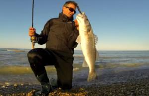 pesca-robalo-spinning-corrico-mar-italia