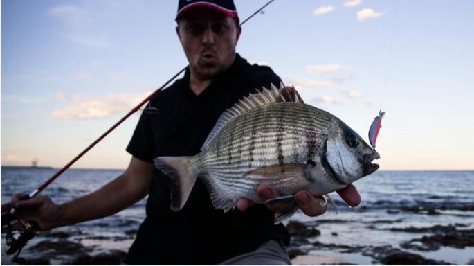 Pesca aos sargos Spinning Ryuki 60