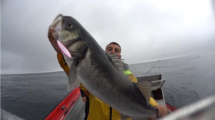 Pesca embarcada Robalo em Slow Jig
