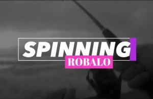 spinning robalo 3kg