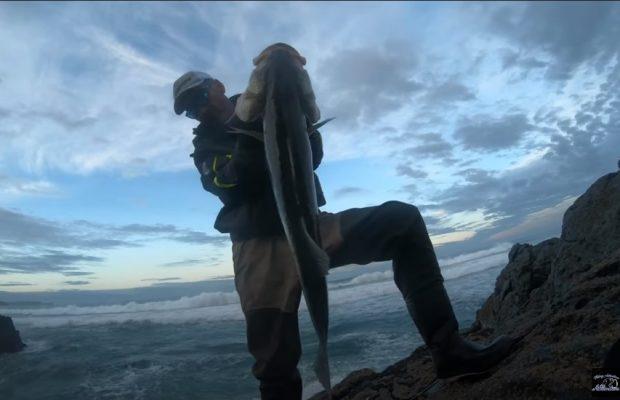 robalo girante rock fishing